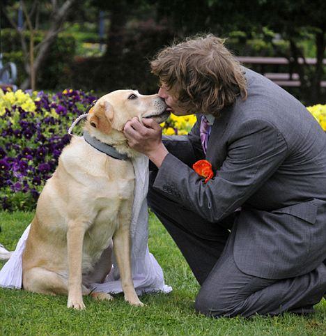 amour animal entre eux